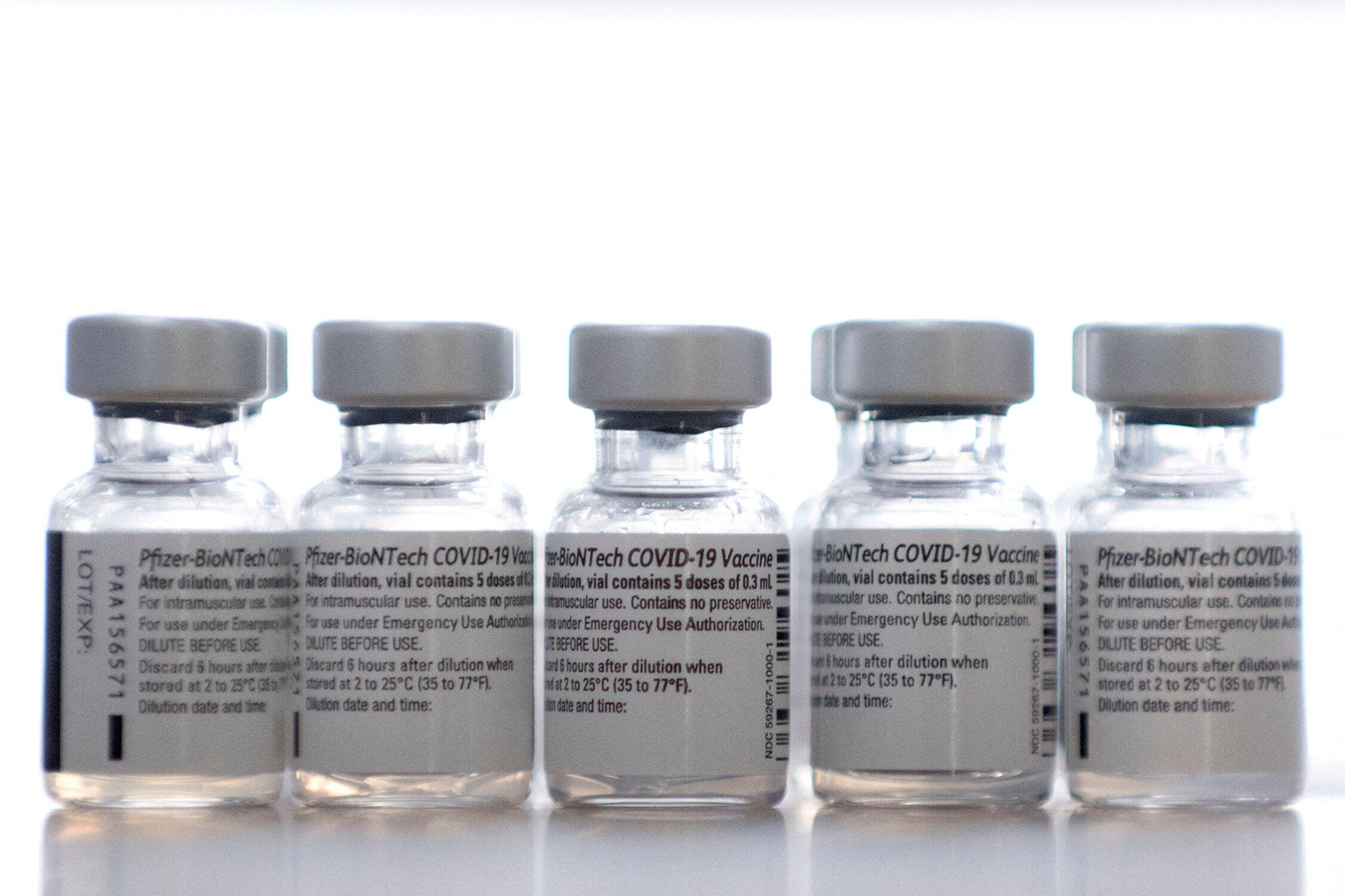 Vaccins Pfizer/BioNTech, 11 février 2021. (JORGE GUERRERO /