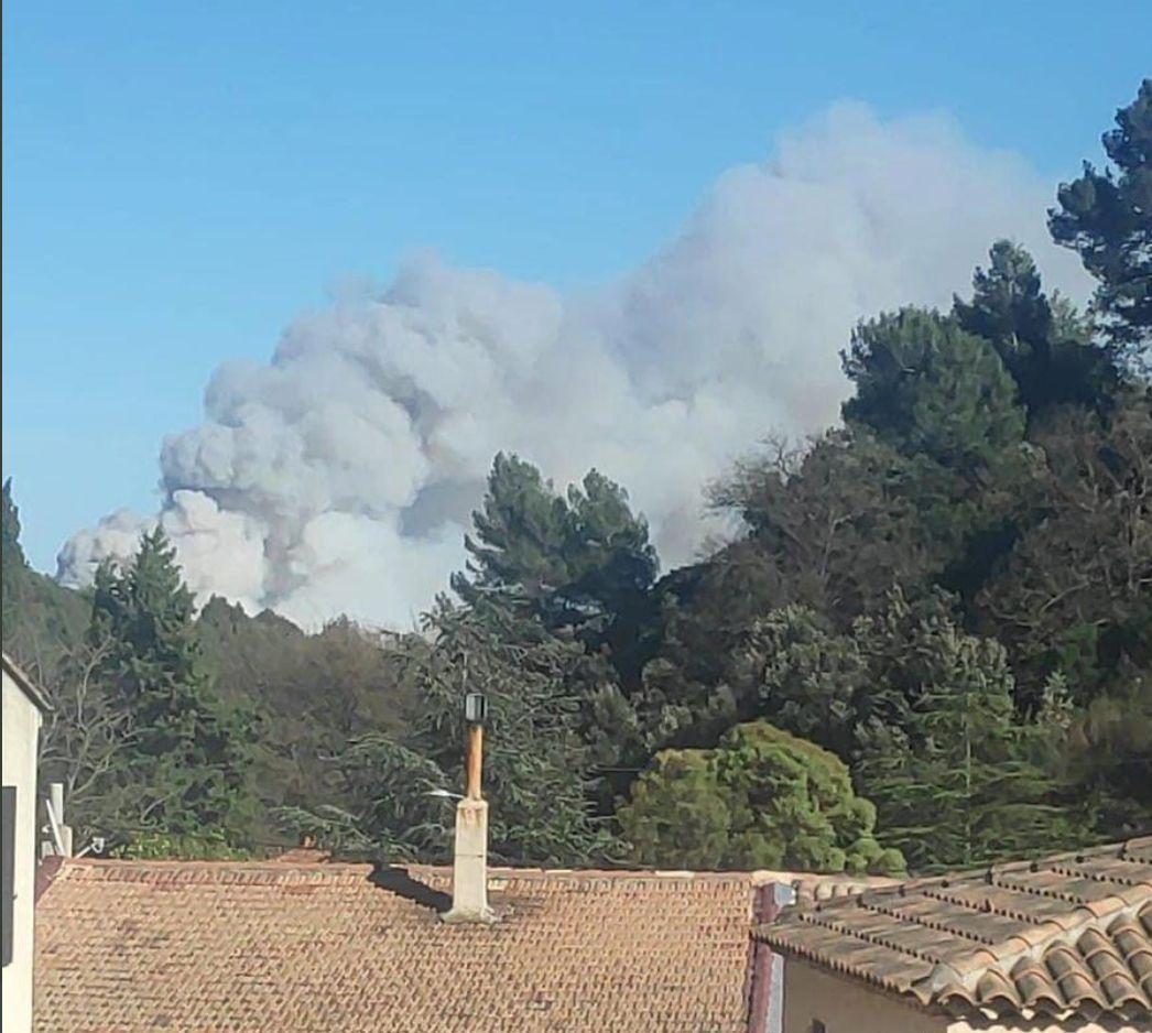 175 pompiers ont été déployés sur le terrain après l'incendie près...