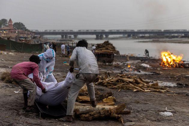 Des hommes ramassent des victimes présumées du Covid-19 sur les rives du Gange en Inde le 6 mai