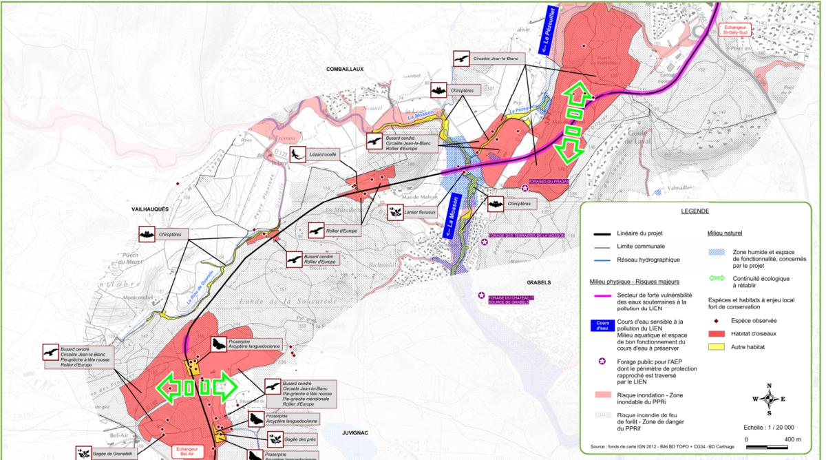 Espèces menacées sur le parcours du dernier tronçon du L.I.E.N - https://www.herault.gouv.fr/